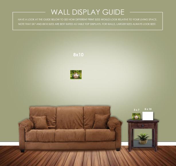 WallGuide8x10